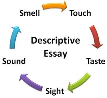 Descriptive essay about my sonora